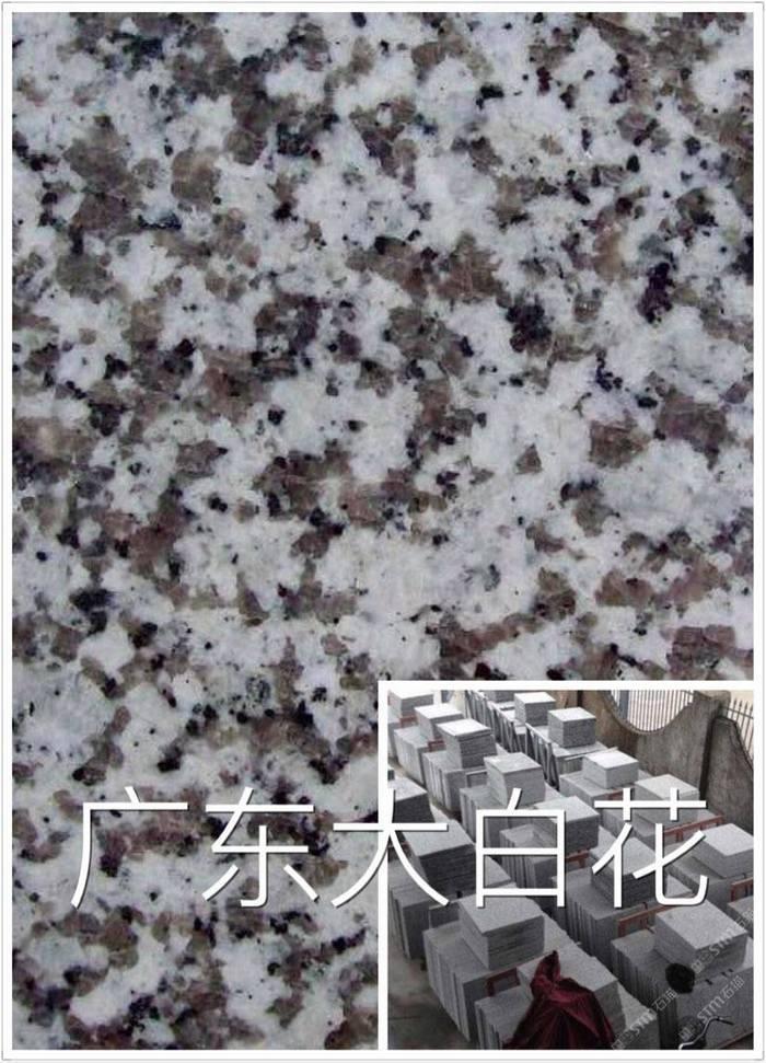 廣東大白花