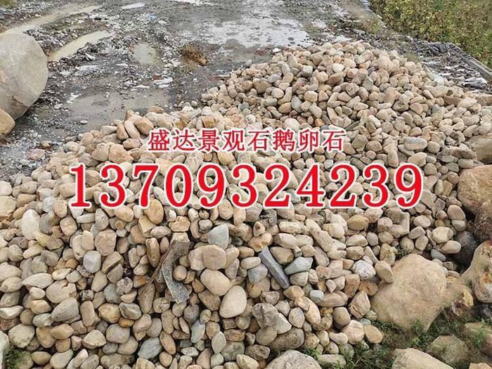变压器鹅卵石批发小溪石过滤器过滤石河卵石河道石