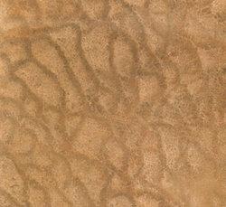 木纹黄-正切
