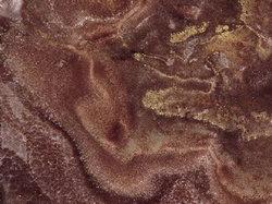 坦桑尼亚玉石
