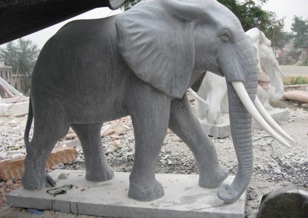 漢白玉大象工藝品_漢白玉大象廠家(圖片)