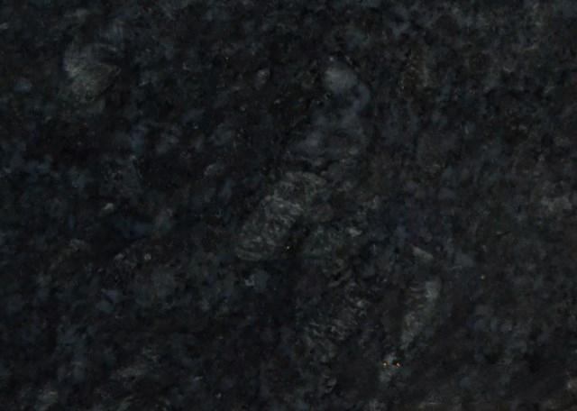新蓝珍珠(内蒙)
