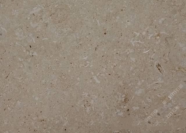 金摩卡2圖片